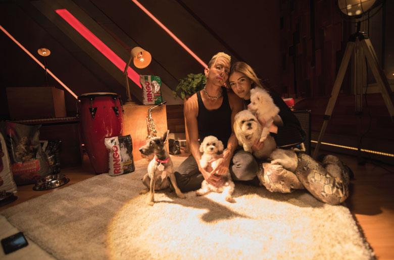 Perros de Daiky Gamboa y Dani Duke